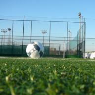 dds_box_calcio